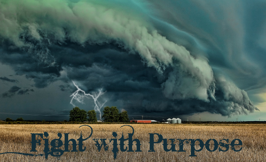 fight with purpose